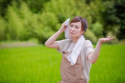 汗を拭く作業着の女性